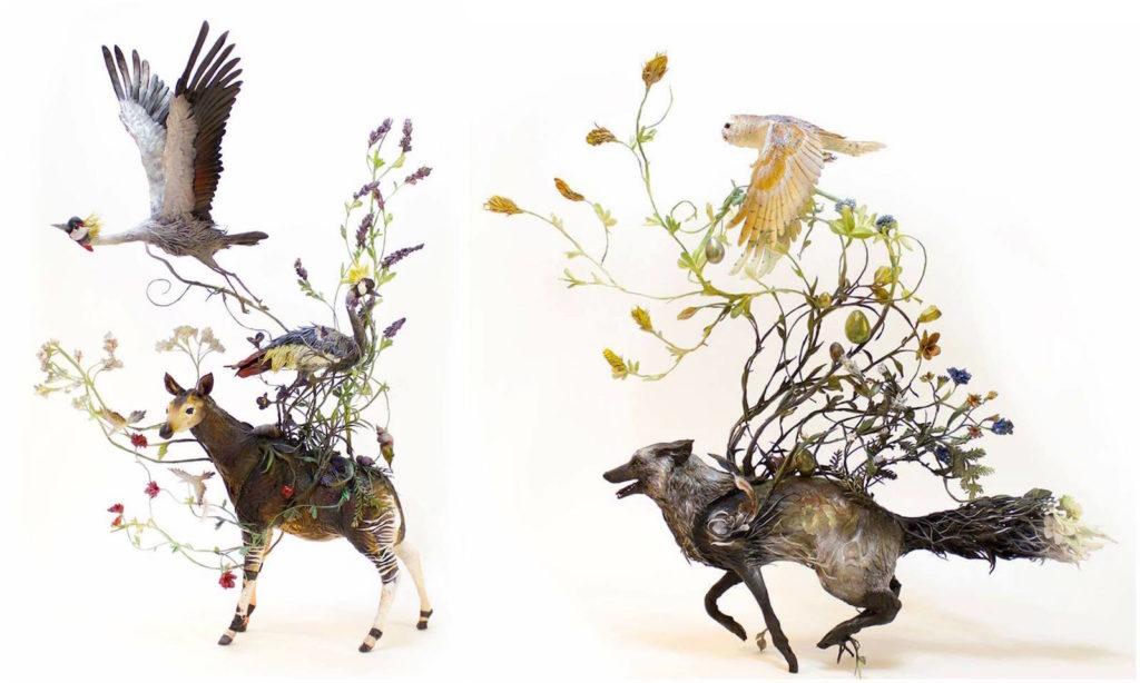 Ellen Jewett - aves e fox