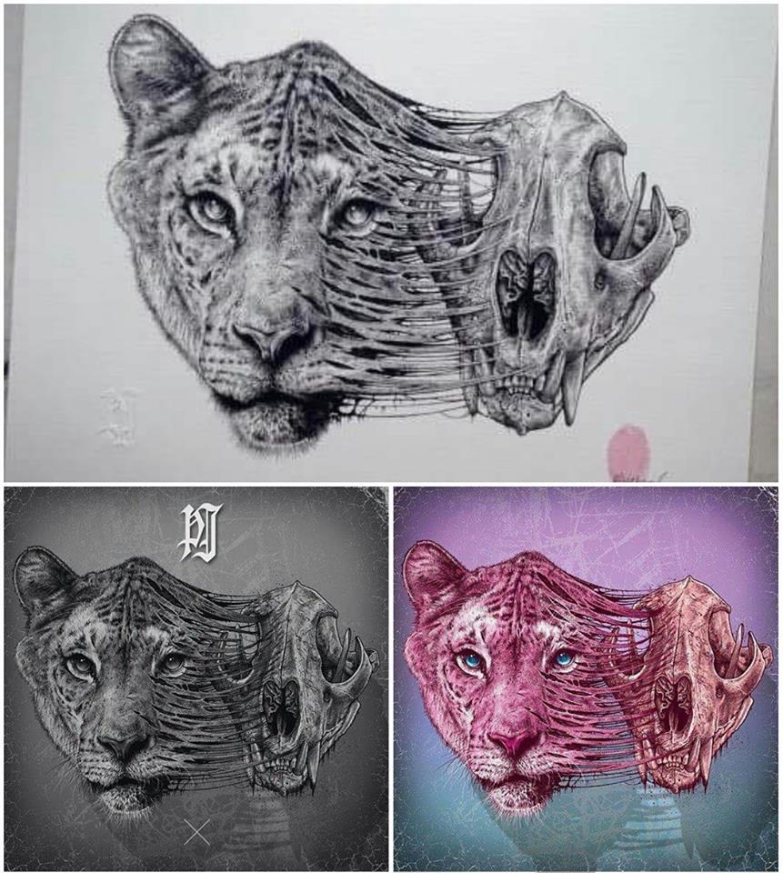 Paul Jackson - Tigre