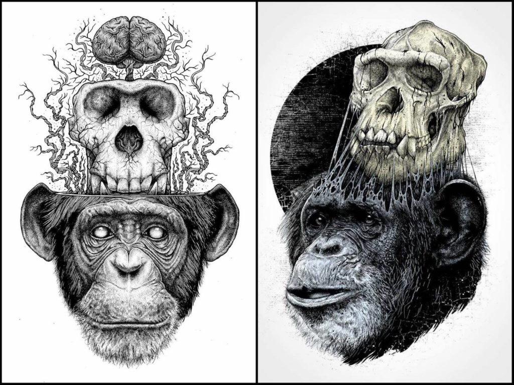 Paul Jackson - macaco caveira