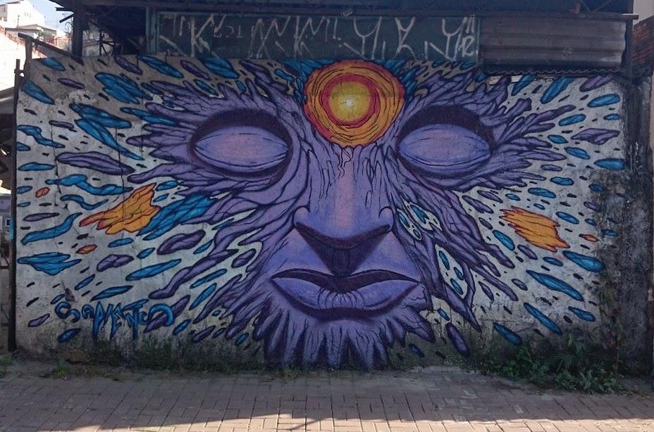 sapiens graffiti mural
