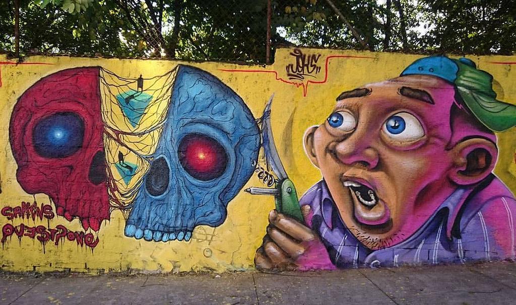 sapiens - joks skull