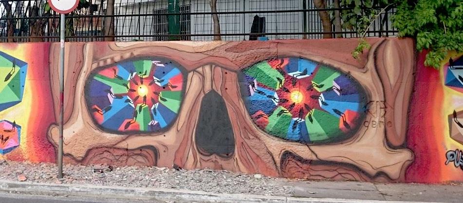 sapiens mural caveira