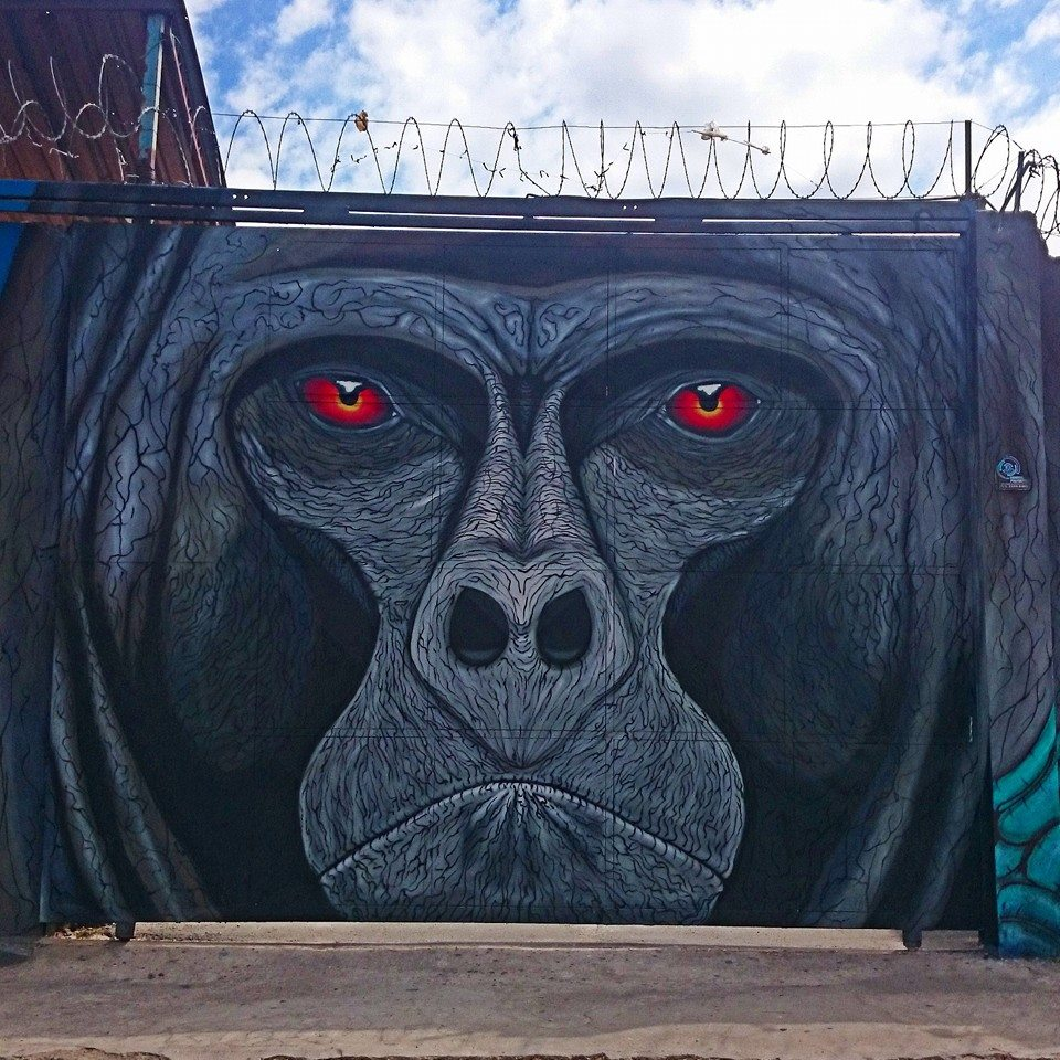 sapiens mural gorila