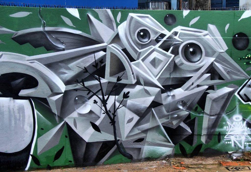 Amazon - amazonia arte urbana