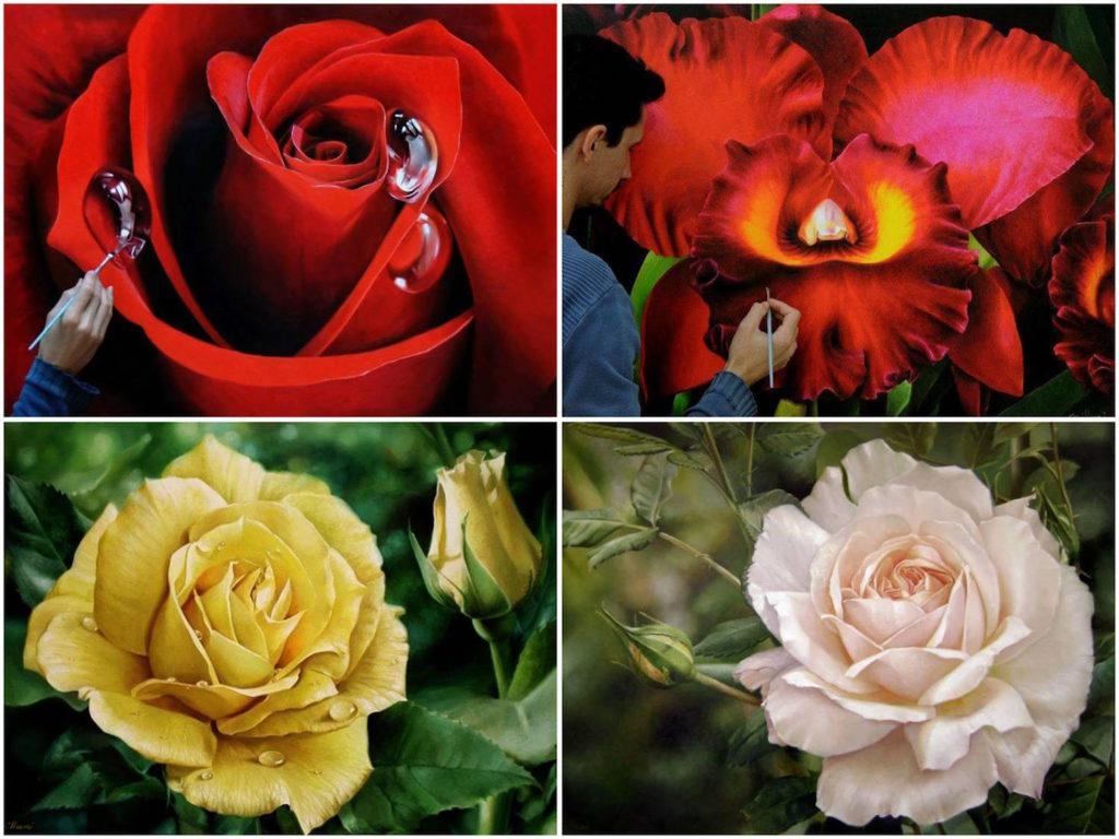 Fabiano Millani - Pinturas rosas