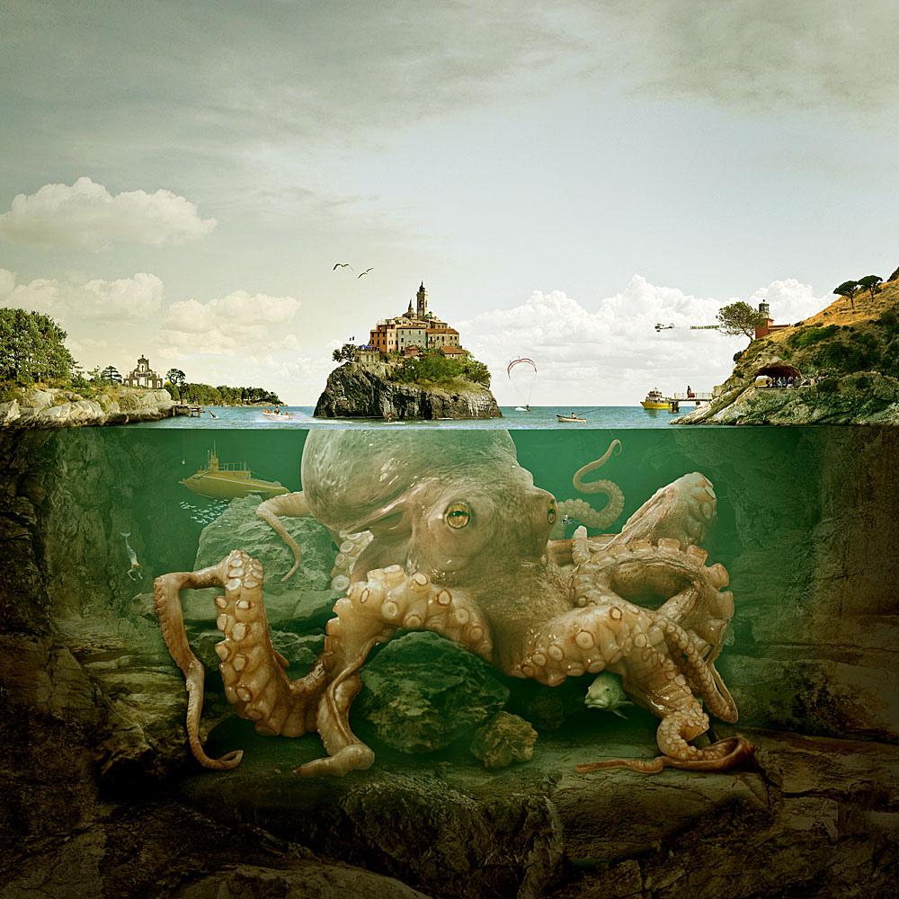 gediminas-pranckevicius-povo-octopos